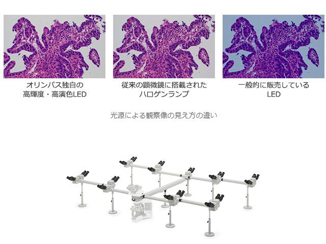 オリンパス,高輝度・高演色LED顕微鏡を発売