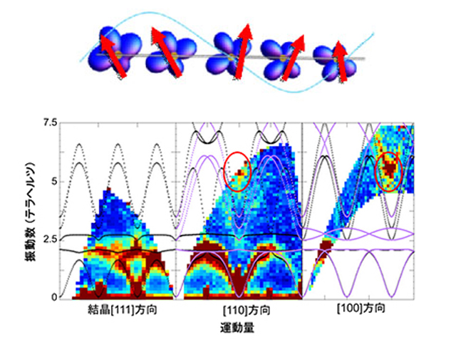 東大ら,スピンのふらつきと電子軌道の関係を解明