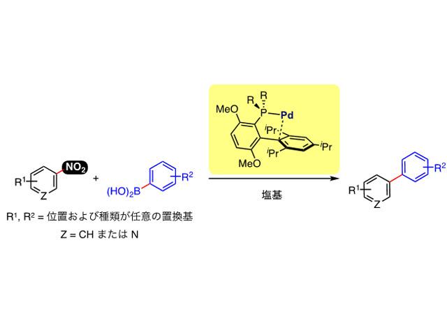 京大ら,芳香族ニトロ化合物のクロスカップリングに成功