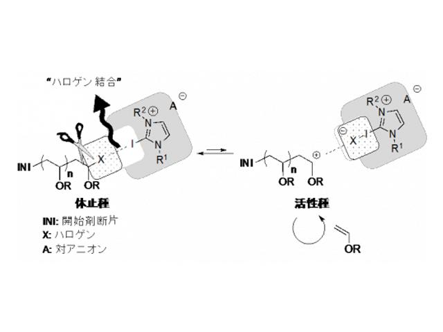 名工大,金属触媒を用いず高分子を合成