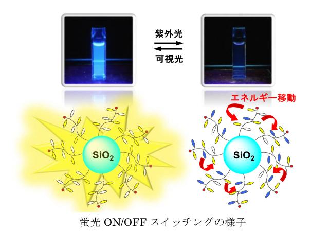 大阪市大,高効率な蛍光スイッチング材料を開発