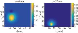 蛍光画像再構成例 出所:JST