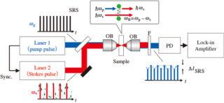 図1 SRS顕微鏡の原理模式図(提供:小関氏)