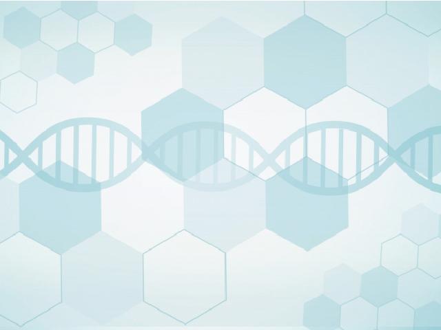 光遺伝学と脳研究