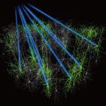 業界初!高速出力変調モジュール内蔵,多光子励起顕微鏡向け光源の画像
