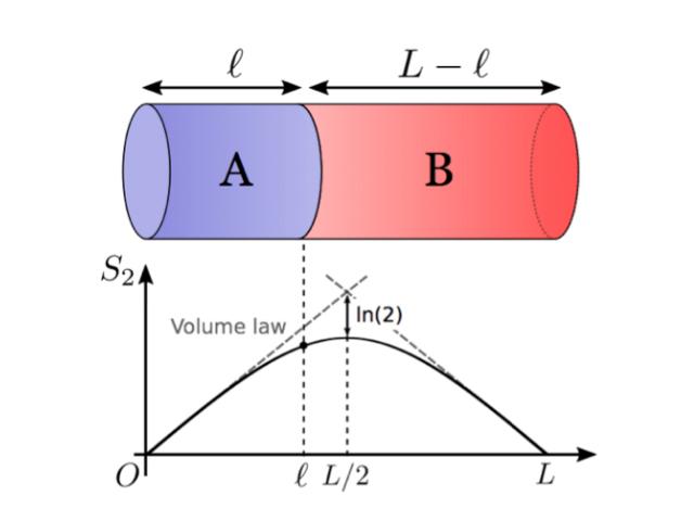 東大,平衡状態における量子もつ...