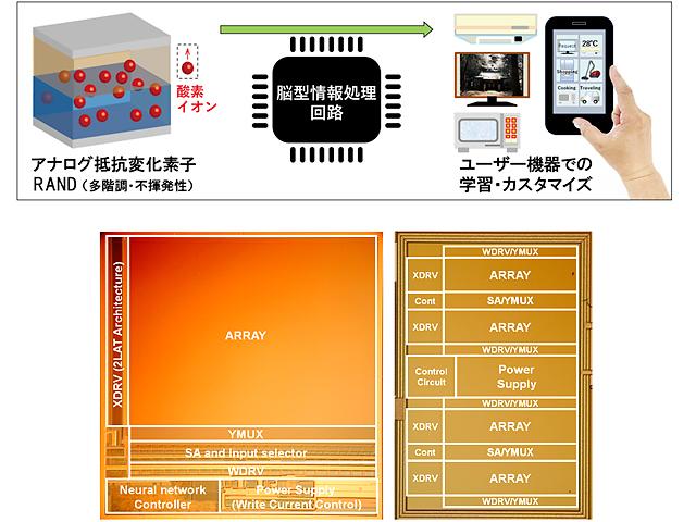 NEDOら,低消費電力AI半導体向け脳型情報処理回路を開発