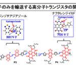 東工大,水素結合による高分子トランジスタを開発の画像