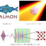 筑波大ら,先端光科学用の第一原理計算ソフトを開発の画像