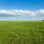 景観のチューリングテストの画像