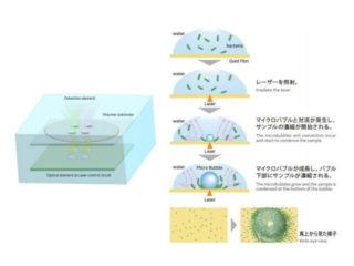府大ら,細菌検出の光濃縮システムを小型化