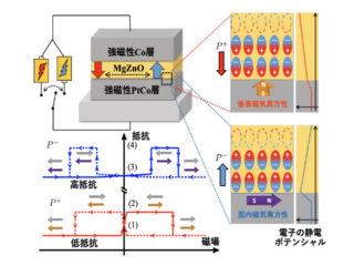 金沢大,電気分極変化で磁気的性質を制御