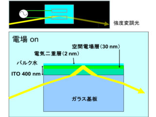 理科大,水を利用した光変調器を開発