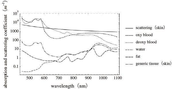 図1 各種生体物質の吸収係数波長依存性1〜3)